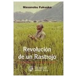 Revolución de un Rastrojo
